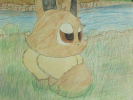 Little River Eevee by Wolfie-Forever