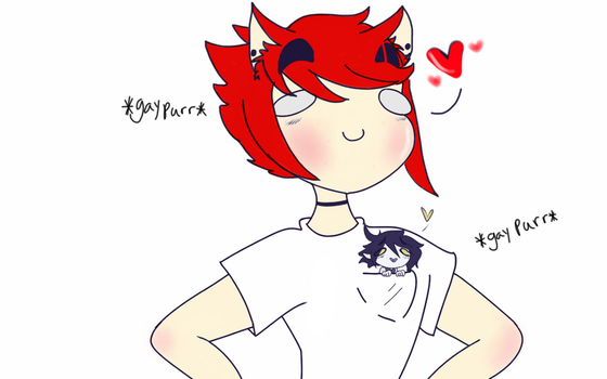 Cat Guy and Pocket Bat by Sallade