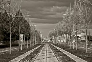 le tram by redphoto-59