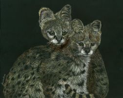 The Serval Twins by Farawaywithin