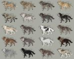 Semi-Realistic Wolf Adoptables Set 8 - CLOSED by Therbis
