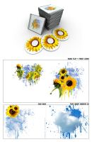 The Sunflower Crutch by smashmethod