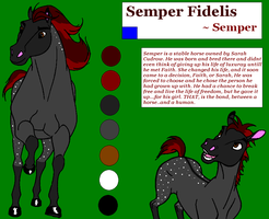 Semper Fi - Reference Sheet by CarnationRose