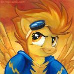 Square Series - Spitfire by sophiecabra