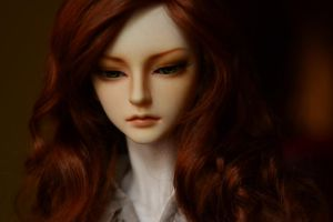 Ginger beauty by indolight