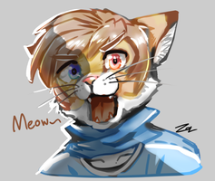 Meow by Sollyz