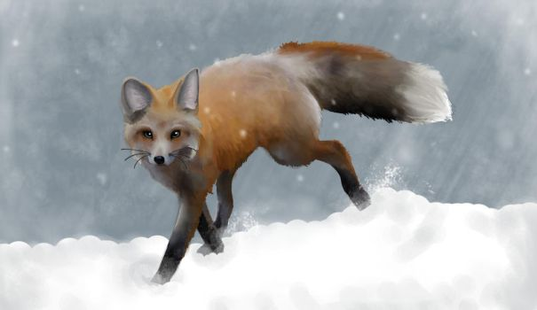 Winter Fox by Artistry-Blade