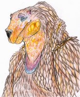 Bear bird thing by AnnieHoppe