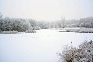 winterland 10 by priesteres-stock