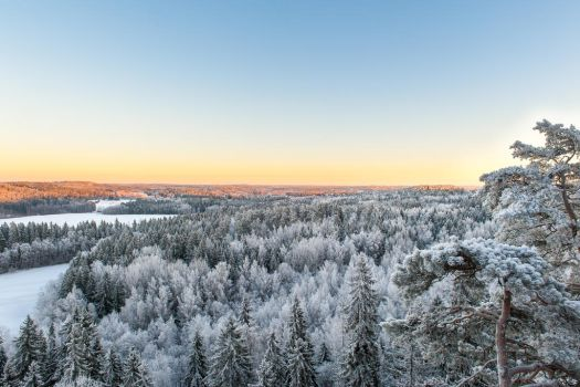 Finnish Winter Landscape by valkeeja