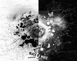 Black or White by Angel62599