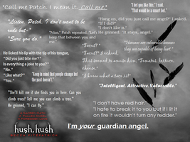 Hush Hush Quotes by Kawaiipandamelon