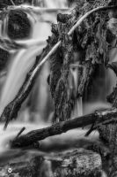 The Eye in the Falls BW by mjohanson