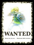 Wanted: Link by thebrilliant