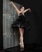 Black Swan by RenataJansen
