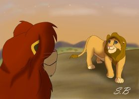 Welcome home son by sbrigs