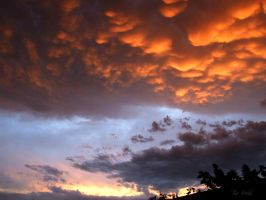Mammatus cloud by MaSk001
