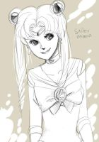 Sailor moon by koenta
