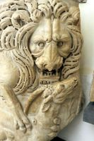 lion. Rome ...2 by DemonSD