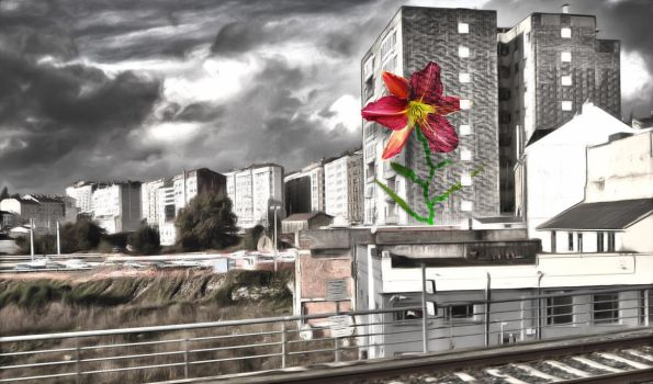Downtownflower New Version by ChrisTobiS
