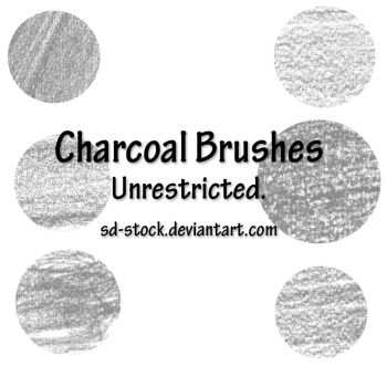 Charcoal Brushes by sd-stock