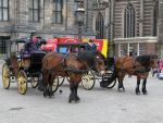 Various 45 - carriage on Dam square 2 by Momotte2stocks