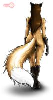 hips and tail by Red-Indicator