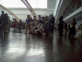 AnthroCon 2012: Japanese Suiters by murkrowzy