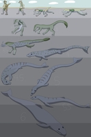 Evolution of Whales by Weazel75