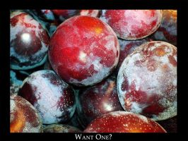 Plums by naini