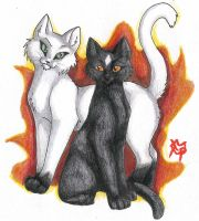 A Match Made in StarClan by CaptainMorwen