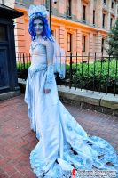 Corpse Bride by JailBreakDesigns