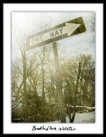 One Way by ginger-roots