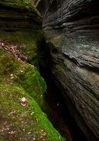 Nelson's Ledges 1 by copperrein