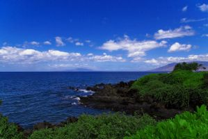 The Other Side of Maui by A18Braun