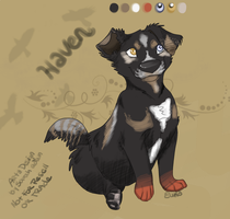 Haven - Mutt by swankie
