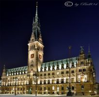 Hamburg City Hall Night by Bull04