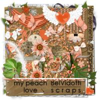 Scrapbooking Orange v34 by rakanksa