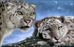 Snow Leopards by oomu