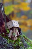 Autumn Danbo by lightlanaskywalker
