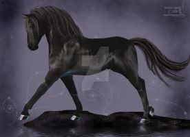 Black Stallion by WrenStormbringer