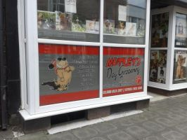 Muttley's Dog Grooming by BluebottleFlyer