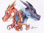 Charizard Line by Pokemonpassage