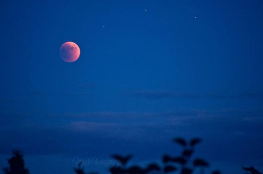 Lunar Eclipse by NanaPHOTOGRAPHY