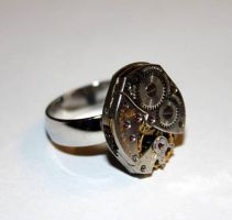 Steampunk Adjustable Ring by Create-A-Pendant