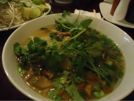Chicken Pho by BewilderedFemale