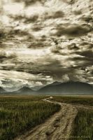 Land of Golden Clouds by ddsk1191