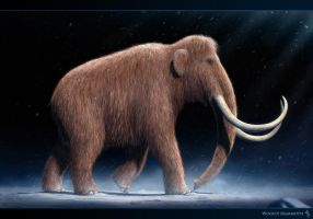 Woolly Mammoth by Swordlord3d