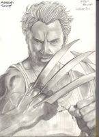 Wolverine Sketch by LittleLeonard