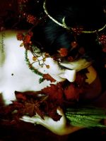 Lady of the Harvest III by fantine